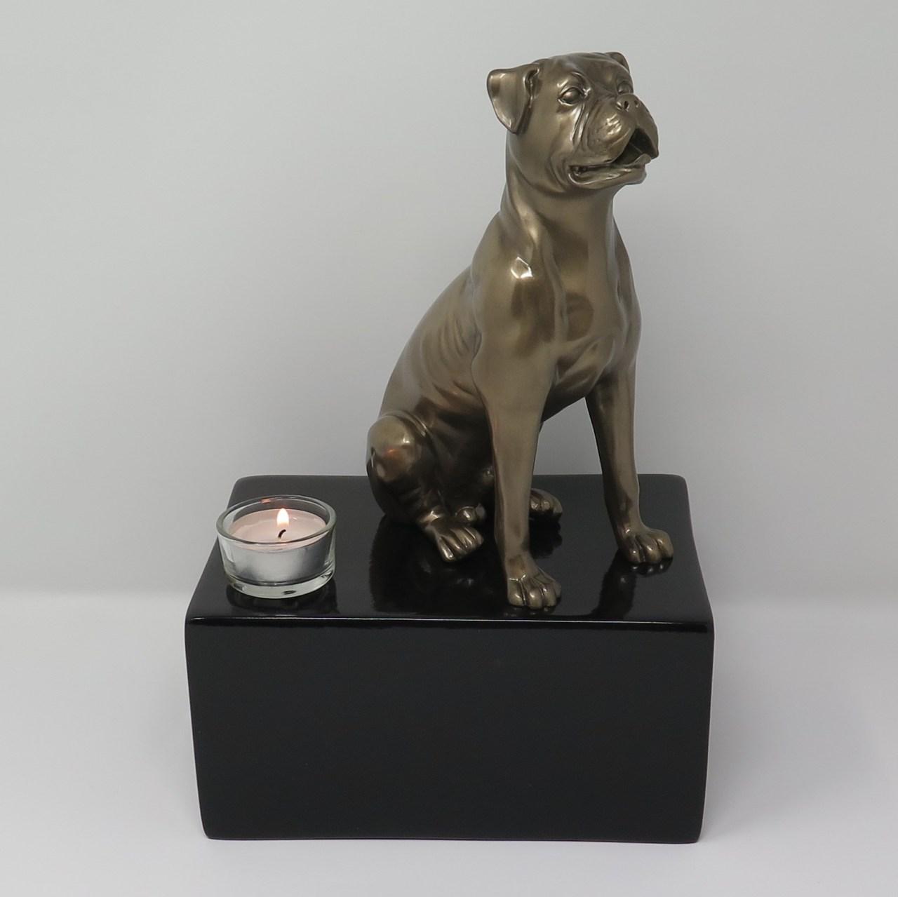 Boxer Urne mit Teelicht Designurne