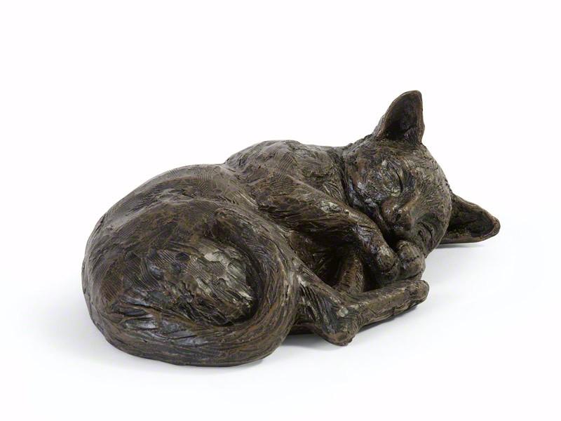 Katzenurne schlafende Katze Poly
