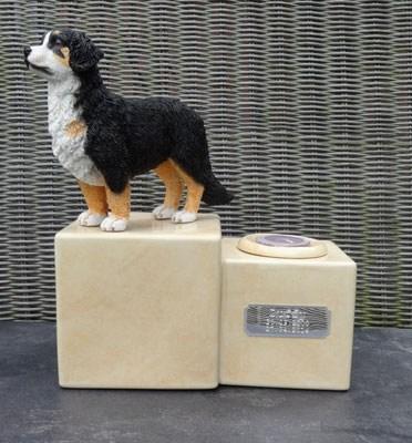 Berner Sennenhund Urne mit Kerze