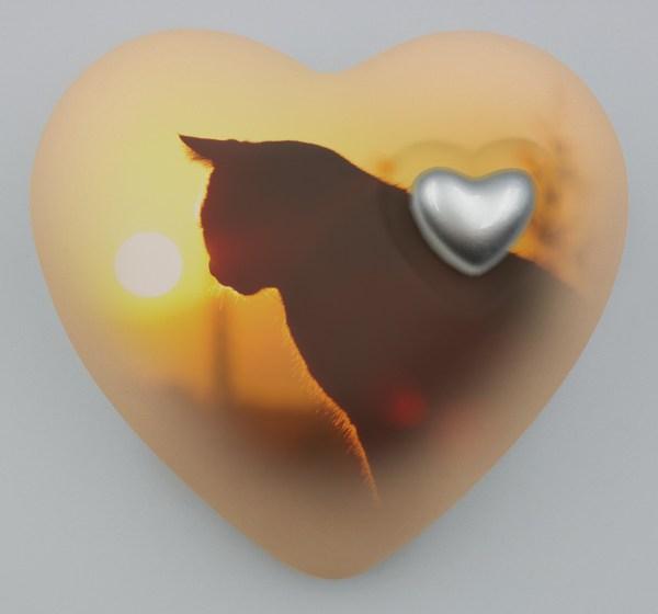 "Katzenurne Herz ""Katze im Sonnenuntergang"""