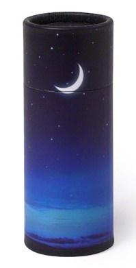 Aschestreuurne Starry Night
