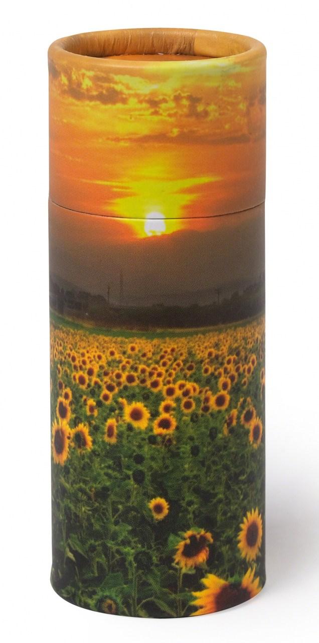 Aschestreuurne Sunflowers