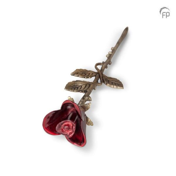 Miniurne Rose Rot
