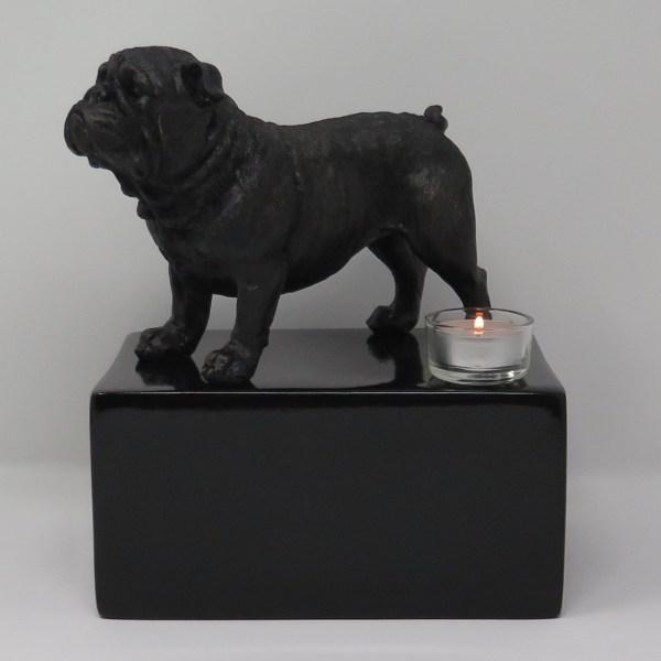Englische Bulldogge Urne mit Teelicht