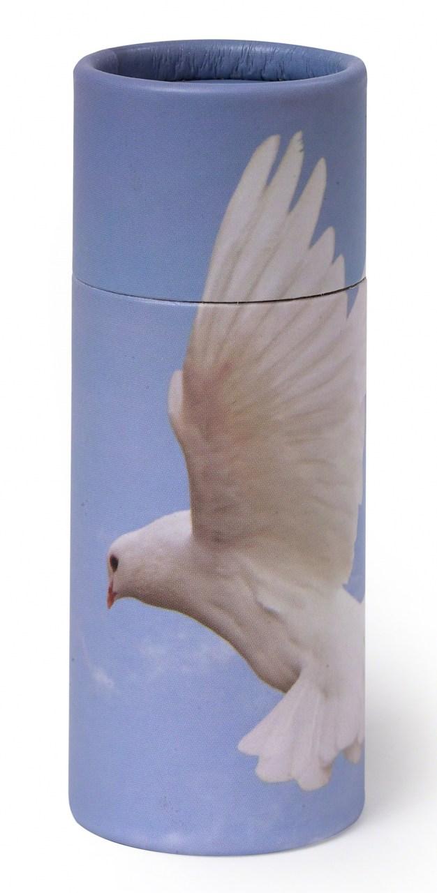 Aschestreuurne Dove