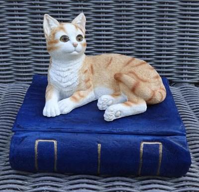 "Katzenurne ""Katze auf Buch Rot"""