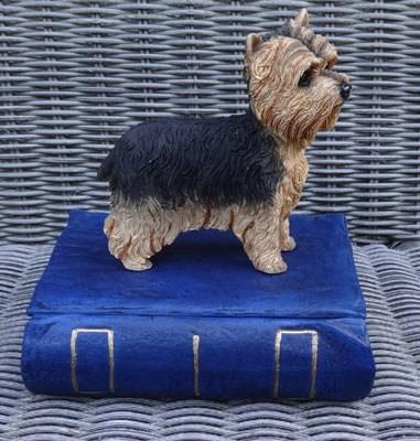 Yorkshire Terrier Urne Buch
