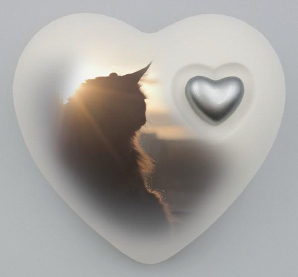 """Katzenurne Herz """"Aufpasser"""""""